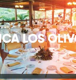 Video Fano Sanchez Agenda Verano 2016