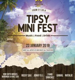 Cartel-Tipsy-Mini-Festival-Enero-2019-web