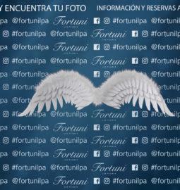 Photocall-Fortuni-con-alas-Mayo-2018-web