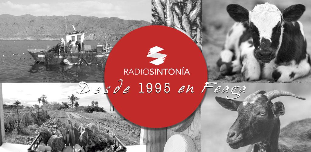 Vinilo-Radio-Sintonía-Feria-Fondo-Junio-2019-3-web